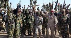 مسلحو بوكو حرام
