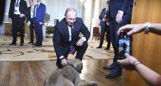 هدية رئيس صربيا للرئيس الروسى بوتين