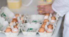 البيض - أرشيفية