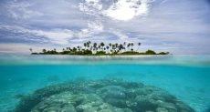 جزيرة