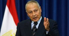أحمد أبو الغيط