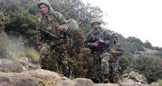 قوات الأمن فى الجزائر