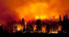 حرائق غابات – أرشيفية