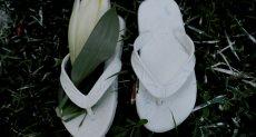 الزهور على أحد الأحذية لتكريم أرواح الشهداء