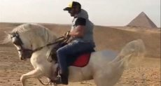الفنان أحمد فلوكس يرقص بالحصان
