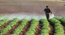 نصائح وزارة الزراعة للفلاحين للاستخدام الآمن للمبيدات
