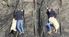رجل ينقذ خروف