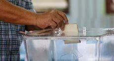 طريقة التصوت فى الاستفتاء