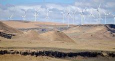 توليد الطاقة من الرياح - أرشيفية