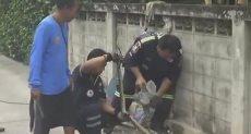 رجال الإنقاذ يحاولون تحرير الثعبان