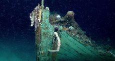 السفينة التى تم اكتشافها