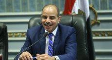 النائب هشام الشعينى رئيس لجنة الزراعة والرى بالبرلمان