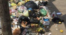 القمامة تحاصر الطرق بالغربية