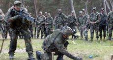 عناصر من الجيش الالمانى