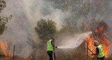 الحرائق فى إسرائيل