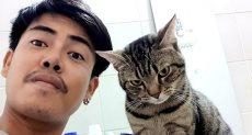 لومفونتين وقطه