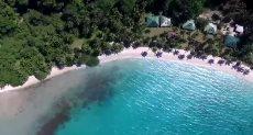 جزيرة بارتون
