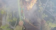 الحطاب يشعل النار فى يده