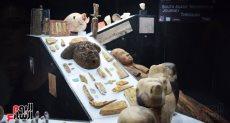 المقتنيات الأثرية