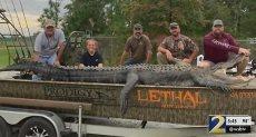 الصيادون ومعهم التمساح الضخم