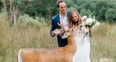غزالة مع عروسين