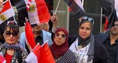 المصريون بأمريكا يحتفلون بالرئيس