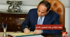 جهود الدولة فى ملف المصريين بالخارج
