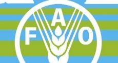 """منظمة الأغذية والزراعة """"فاو"""""""