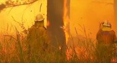 الحرائق فى أستراليا