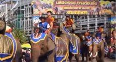 مهرجان مأدبة الفيل