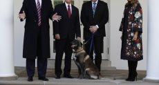 """ترامب يستقبل الكلب """"كونان"""" بطل عملية قتل البغدادى"""