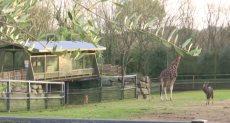 حديقة الحيوان الفرنسية