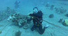 العاهل الأردنى ينظف مياه خليج العقبة