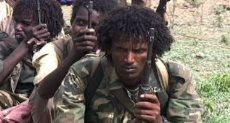 ميليشي التة الإثيوبية