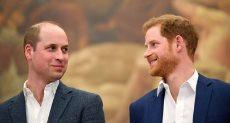 الأمير هارى والأمير وليام