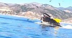 الحوت يبتلع القارب