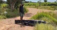تمساح يستجيب لمذيع أسترالى