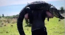 اللاعب يحمل تمساح