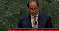 الأمين العام المساعد للجامعة العربية حسام زكى