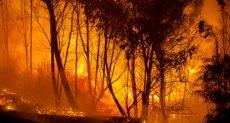 حراق قبرص المشتعلة - صورة متداولة عبر الأنترنت
