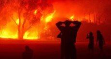 حرائق الغابات فى الجزائر
